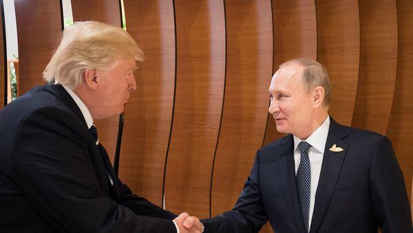 Donald Trump et Vladimir Poutine pendant le sommet du G20 à Hambourg - Sputnik France