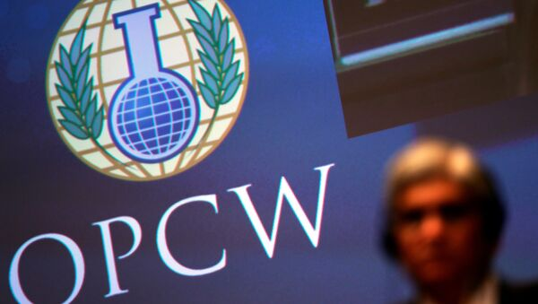 The logo of the Organisation for the Prohibition of Chemical Weapons (OPCW) is seen during a special session in the Hague, Netherlands June 26, 2018 - Sputnik France