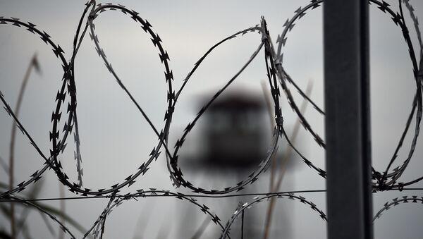 Clôture de fil barbelé - Sputnik France