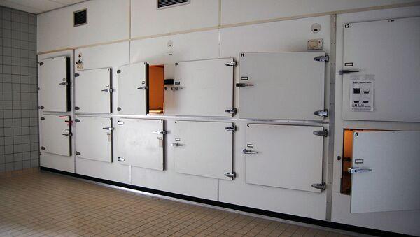 Une morgue, image d'illustration - Sputnik France