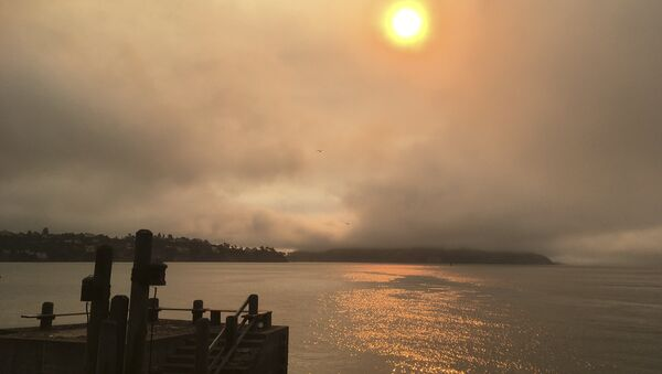 In this photo taken Sunday, July 1, 2018, a haze from wildfires is seen over Angel Island, at right, and San Francisco Bay from Sausalito, Calif. A fire official says a massive wildfire tearing through rural Northern California is burning 1.5 square miles (4 square kilometers) of rugged terrain an hour. Gabe Lauderbale, a spokesman with the California Department of Forestry and Fire Protection, said Monday, that hot temperatures and gusty winds are contributing to the fast spread of the blaze in sparsely populated areas of Yolo and Napa counties - Sputnik France
