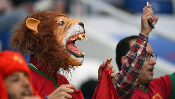 Les supporters du Maroc  - Sputnik France