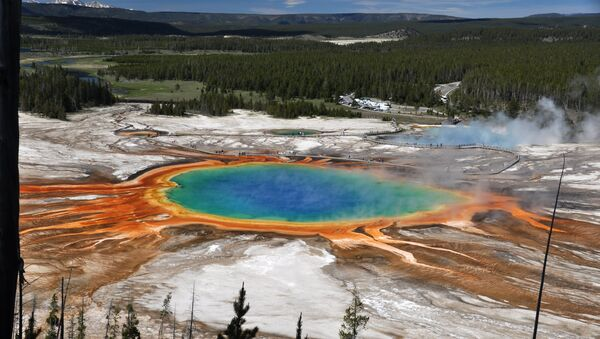 le parc national de Yellowstone aux États-Unis - Sputnik France