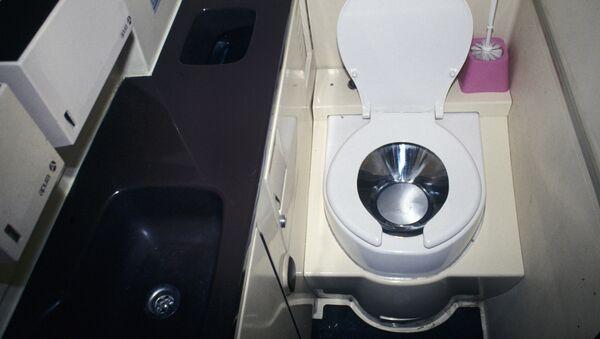 Une cuvette de toilette - Sputnik France
