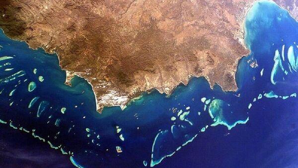 Great Barrier Reef, Australia - Sputnik France