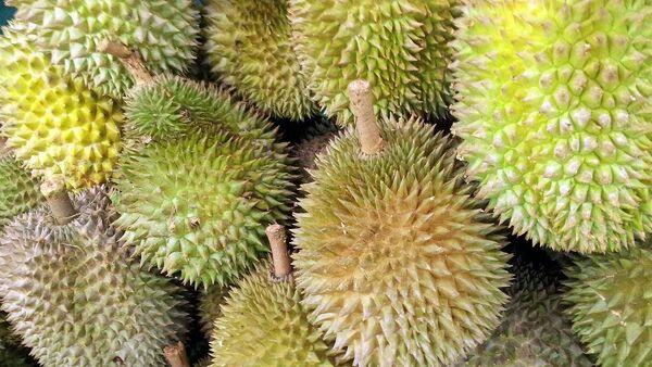 Le durian - Sputnik France