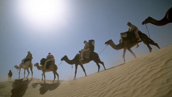 Le Sahara occidental - Sputnik France