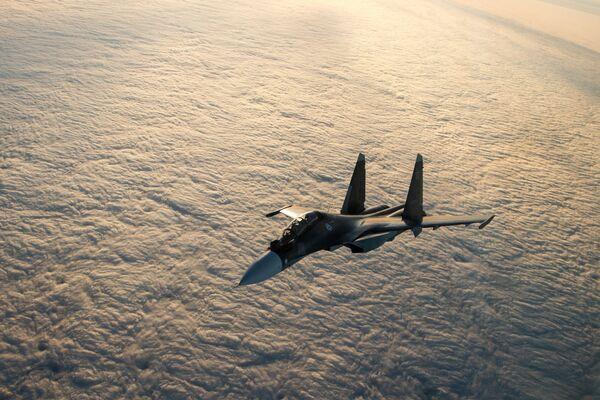 Oiseaux de haut vol: l'armée de l'air russe - Sputnik France