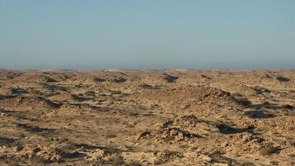 Sáhara Occidental - Sputnik France