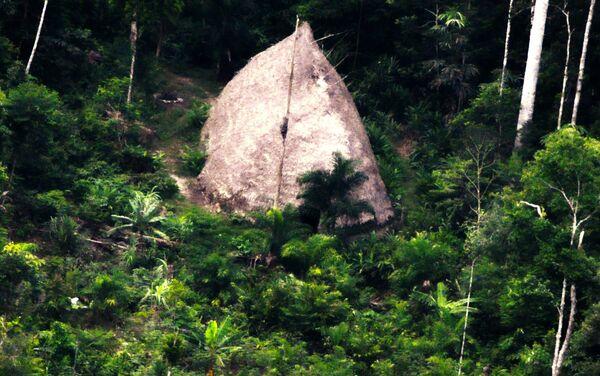 Une habitation indigène découverte lors d'une expédition de la FUNAI - Sputnik France