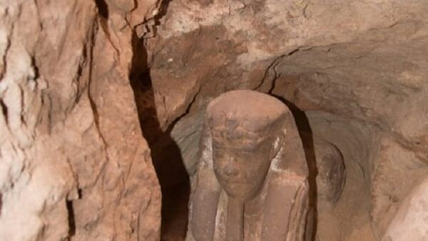 The sandstone statue of Sphinx that was discovered in Kom Ombo Temple in Aswan in upper Egypt is seen in this handout picture obtained on September 16, 2018. - Sputnik France