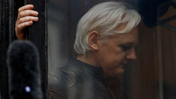 Julian Assange, fundador de WikiLeaks (archivo) - Sputnik France