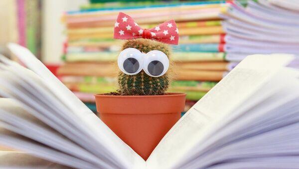 Un cactus devant un livre - Sputnik France