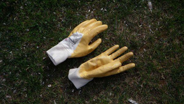 Des gants - Sputnik France
