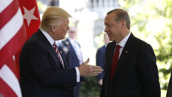 Donald Trump et Recep Tayyip Erdogan (image d'illustration) - Sputnik France