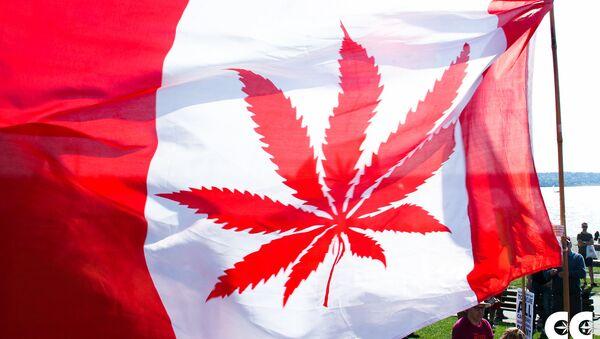 La bandera de Canadá con la imagen de canábis en vez de una hoja de arce (imagen referencial) - Sputnik France