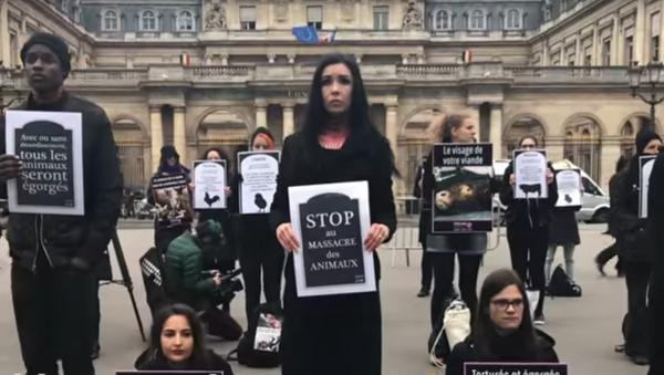Des vegan imitent des «égorgements» pour dénoncer les cruautés faites aux animaux - Sputnik France
