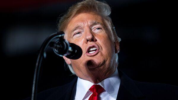 Donald Trump, presidente de EEUU - Sputnik France