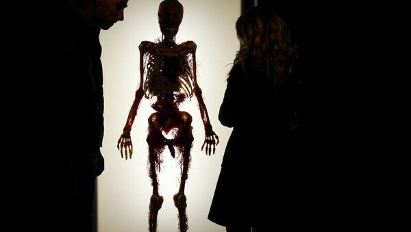 Посетители на выставке Тайны тела. Вселенная внутри - Sputnik France