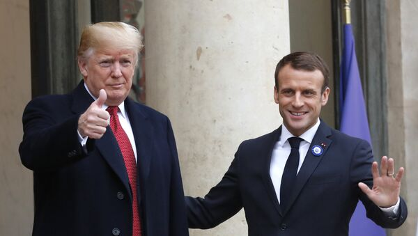 French President Emmanuel Macron, right, and U.S President Donald Trump thumb up at the Elysee Palace in Paris, Saturday, Nov.10, 2018.  - Sputnik France