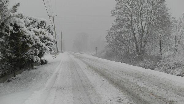 Une tempête de neige - Sputnik France