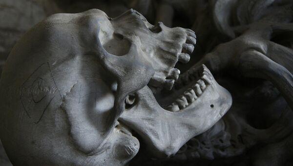 crâne (image d'illustration) - Sputnik France
