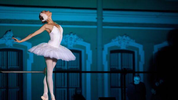 Une ballerine, image d'illustration - Sputnik France