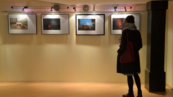 Les œuvres du photojournaliste de l'agence Rossiya Segodnya Andreï Stenine - Sputnik France