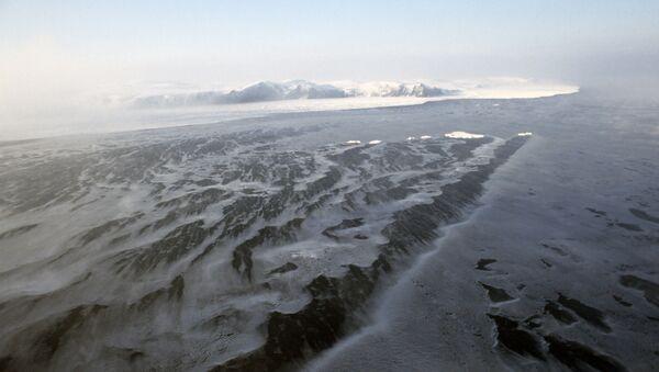 Île Wrangel en Arctique - Sputnik France