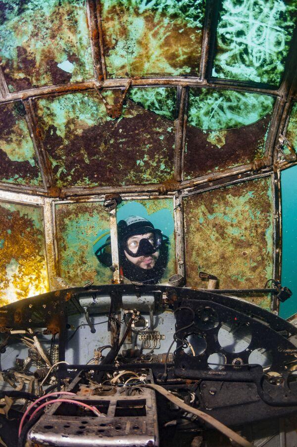 Lauréats du concours de photographie sous-marine Underwater Photographer of the Year 2019 - Sputnik France