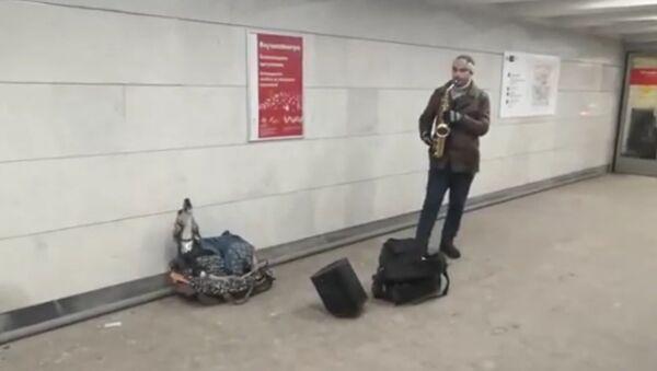 Le duo d'un chien et d'un saxophoniste dans le métro de Moscou - Sputnik France