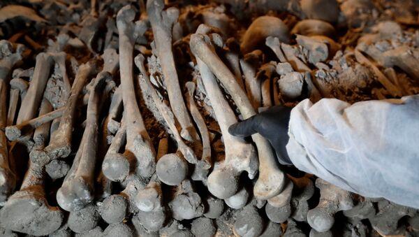 Des os, image d'illustration - Sputnik France