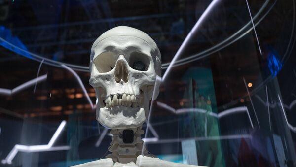 Une exposition scientifique à Moscou (image d'archive) - Sputnik France