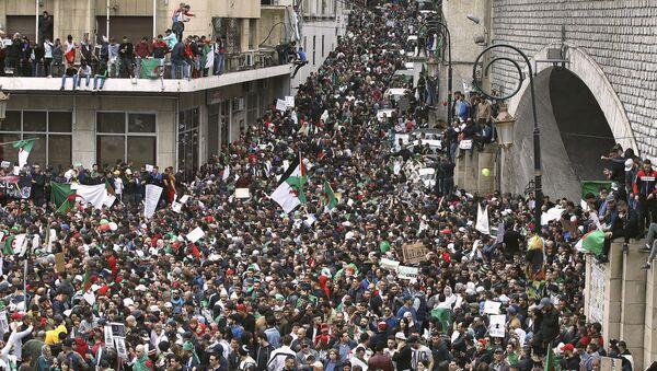 Algeria Protests - Sputnik France