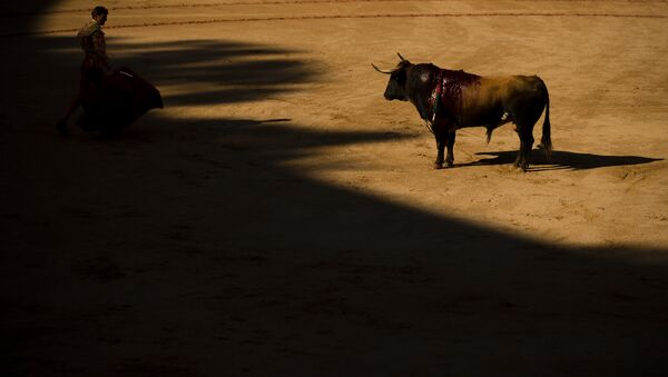 Spanish bullfighter Eugenio de Mora performs with a Cebada Gago ranch fighting bull during a bullfight of the San Fermin Fiestas in Pamplona, Spain, Friday, July 8, 2016 - Sputnik France