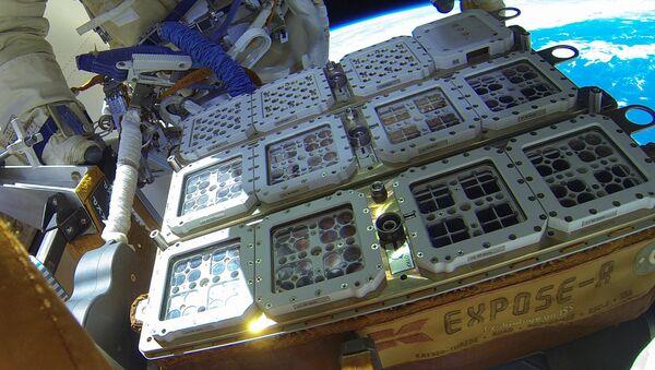 Certains organismes ont été placés à l'extérieur de l'ISS dans l'installation Expose-R2 - Sputnik France