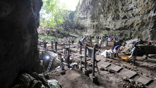 A handout image made available by Florent Detroit and taken on August 9, 2011 shows a view of the excavation in the Callao Cave in the north of Luzon Island - Sputnik France