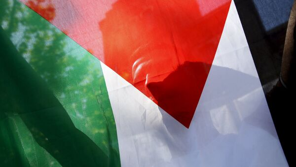 Un drapeau palestinien - Sputnik France