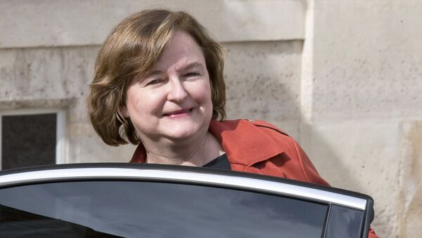 In this March 20, 2019 file photo, then French Minister of European Affairs Nathalie Loiseau gets into her car as she leaves the the weekly cabinet meeting at the Elysee Palace in Paris. - Sputnik France