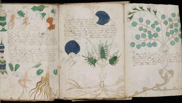 Manuscrit de Voynich  - Sputnik France