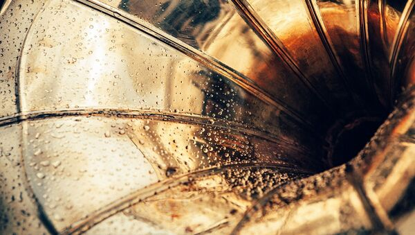 Des gouttes d'eau sur un instrument de musique (image d'illustration) - Sputnik France