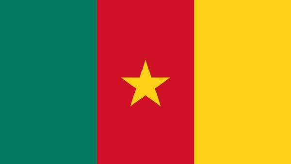 Drapeau Cameroun - Sputnik France