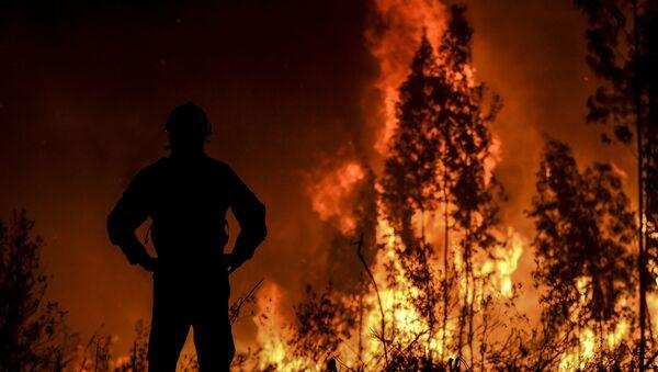Un feu de forêt au Portugal le 21 juillet 2019 - Sputnik France