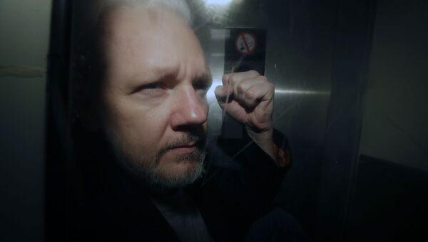 Julien Assange - Sputnik France