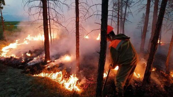 Feux de forêts en Sibérie - Sputnik France