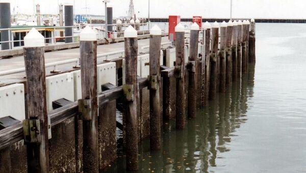Port de plaisance Marlin Marina de Cairns (archive photo) - Sputnik France