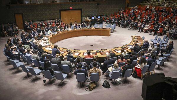United Nations Security Council  - Sputnik France