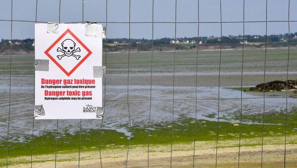 plage de la baie de Saint-Brieuc - Sputnik France