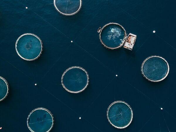 Le nouveau visage de la Terre: pollution des cours d'eau et fonte des glaciers  - Sputnik France