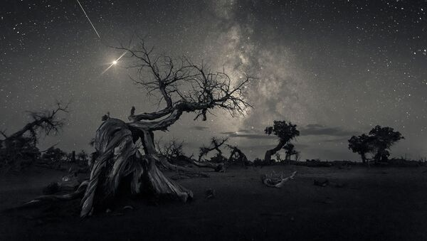 Les lauréats du concours Insight Investment Astronomy Photographer of the Year 2019  - Sputnik France
